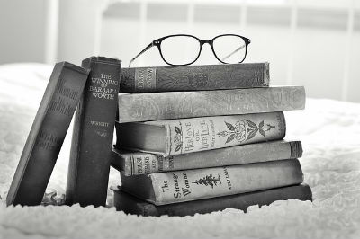 taller de novela